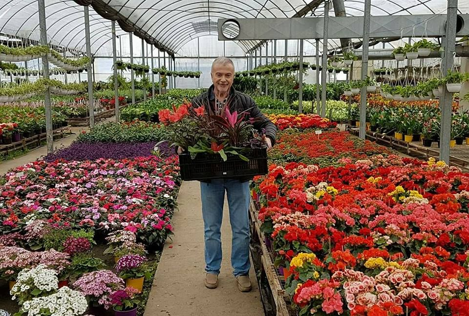 Pin de Guía básica de jardinería ecológicagrupo facebook