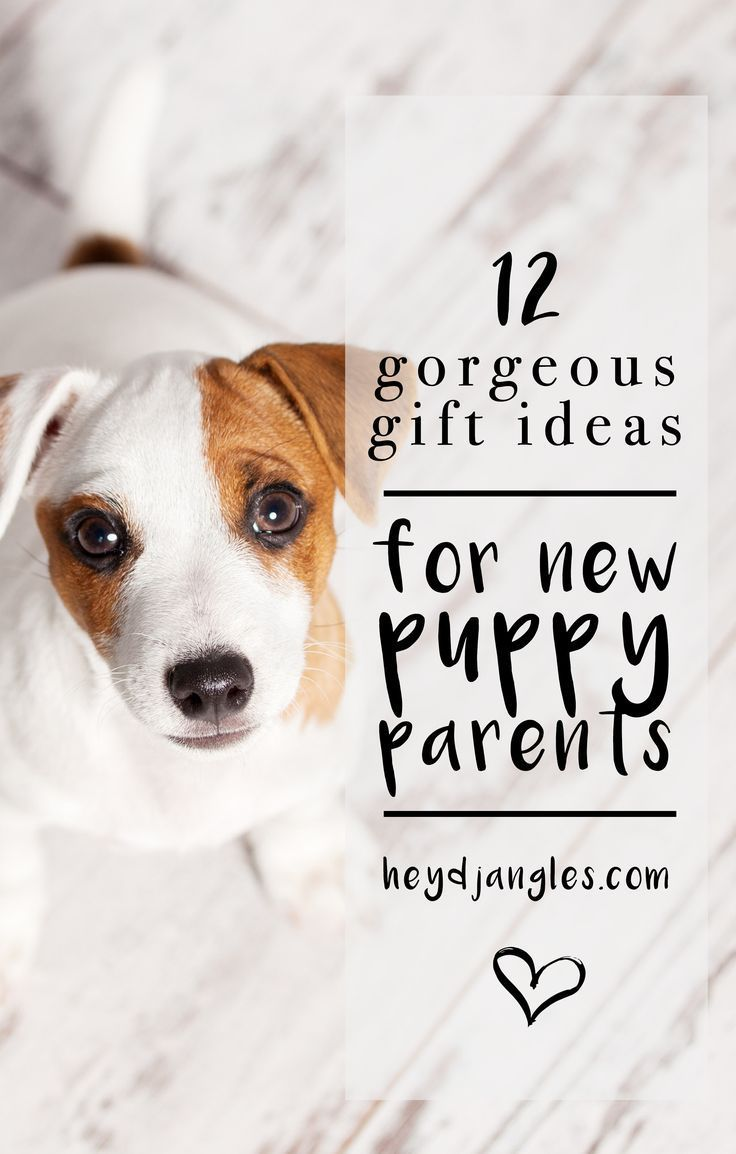 12 Gorgeous Gifts for New Puppy Parents #newpuppy
