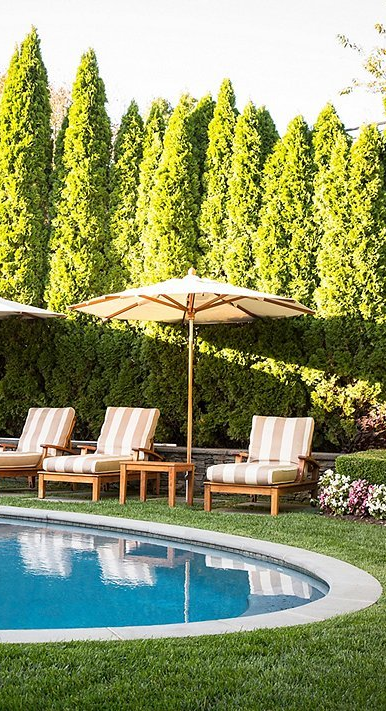 10 Chic Looks To Inspire Your Own Poolside Backyard Oasis Dream House Exterior Pergola
