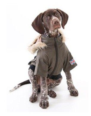 Puchi Military Dog Coat
