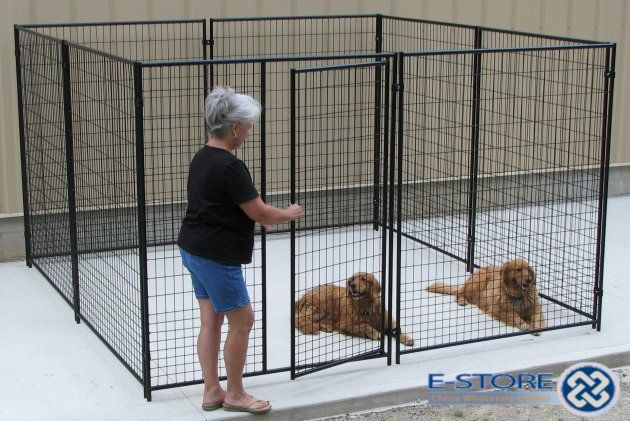 12x12 Galvanized Steel Kennels Google Search Dog Kennel Dog Kennel Cover Diy Dog Kennel