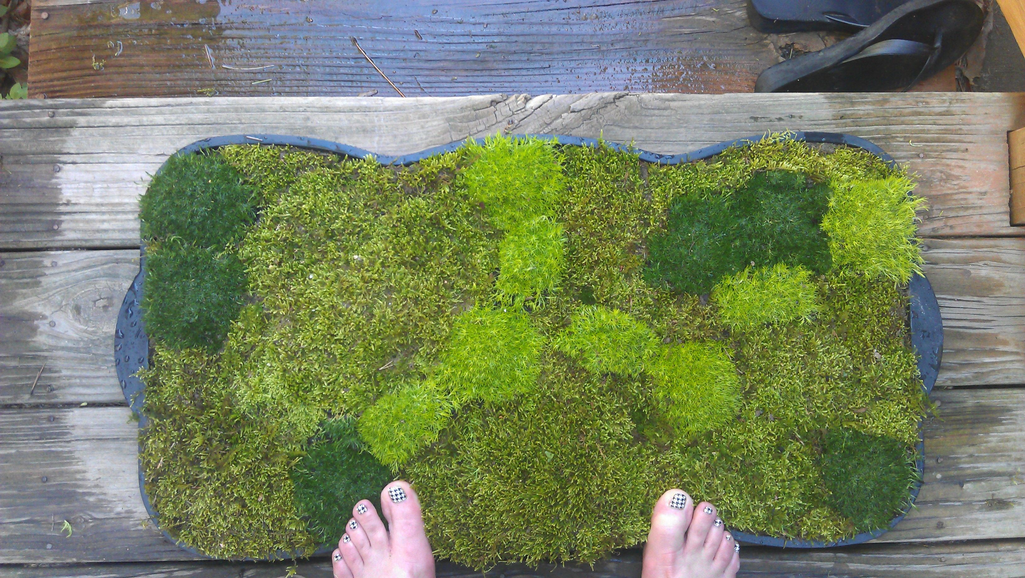 diy moss bathmat. diy moss bathmat   Projects ideas   Pinterest   Project ideas and