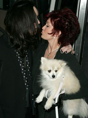 Sharon Osbourne Adored Pomeranian Pooch Minnie Mans Best Friend