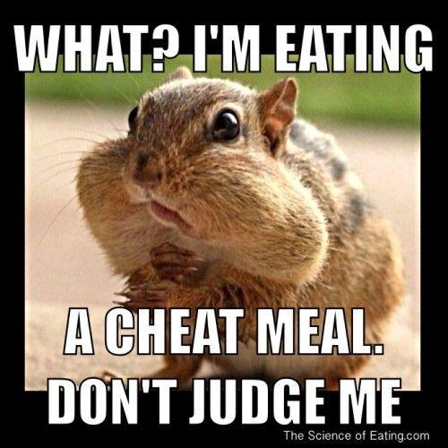Funny Healthy Eating Meme : Motivation cheat meal meme running fitness pinterest