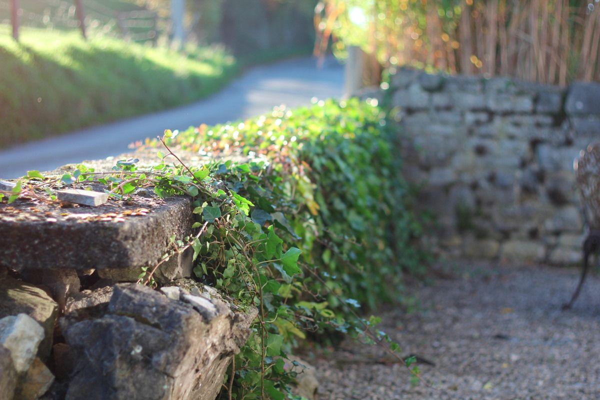 Les Jardins Du Moulin Paysagiste mur et muret | idées jardin, muret et jardins