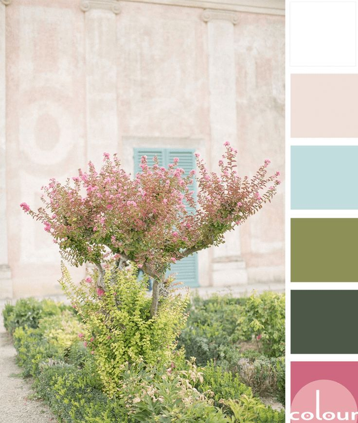 Colour Scheme Emerald Green Sage Green Blush Pink: A PINK AND GREEN COLOR PALETTE WITH A TOUCH OF AQUA BLUE