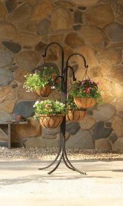 Pin By Barb Hipp On Garden Plant Hangers Plants For Hanging Baskets Outdoor Metal Plant Stands Hanging Plants Diy