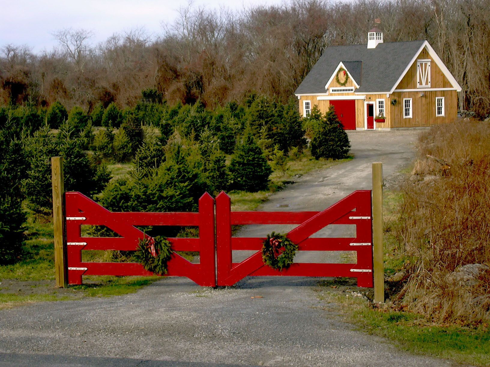 24 36 Christmas Tree Barn Christmas Farm Farm Entrance Yankee Barn Homes