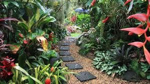 create a tropical garden landscape design tropical garden ideas