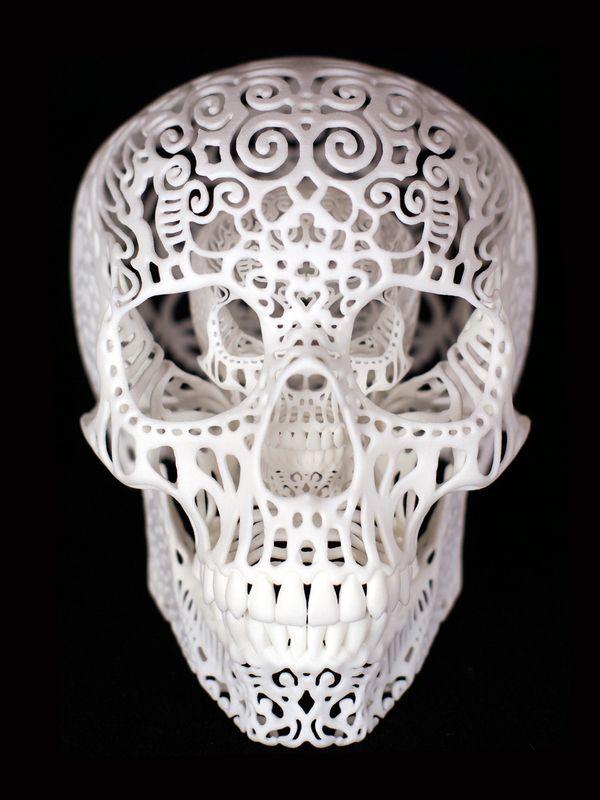 Crania Anatomica Filigre :: Joshua Harker 3D printer