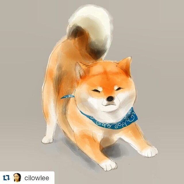 Love Shiba Inu S Learn More About This Breed At Www Myfirstshiba