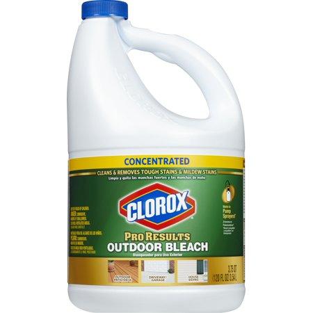 Household Essentials Clorox Mildew Stains Bleach