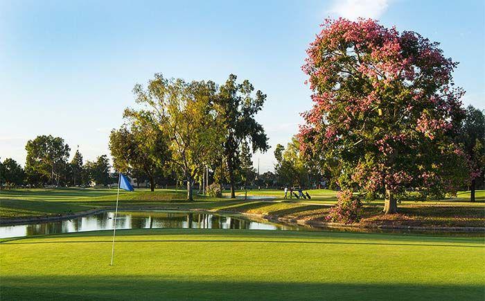 27+ Belmont golf the villages info