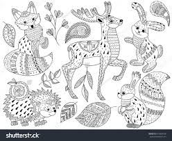Image result for antique animal print grayscale hedgehog