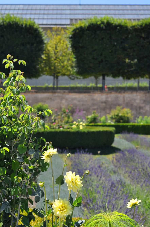 Musee De L Orangerie On Joli Jardin Jardin Des Tuileries Et Jardins