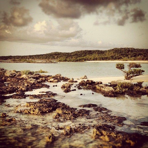 Exuma island #bahamas #beach #landscape #paisaje #vegetacion - @Manuel Cervantes- #webstagram