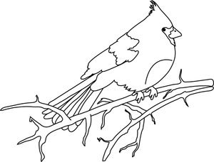 Cardinal Clipart Image Bird Coloring Page of a Cardinal on a Tree