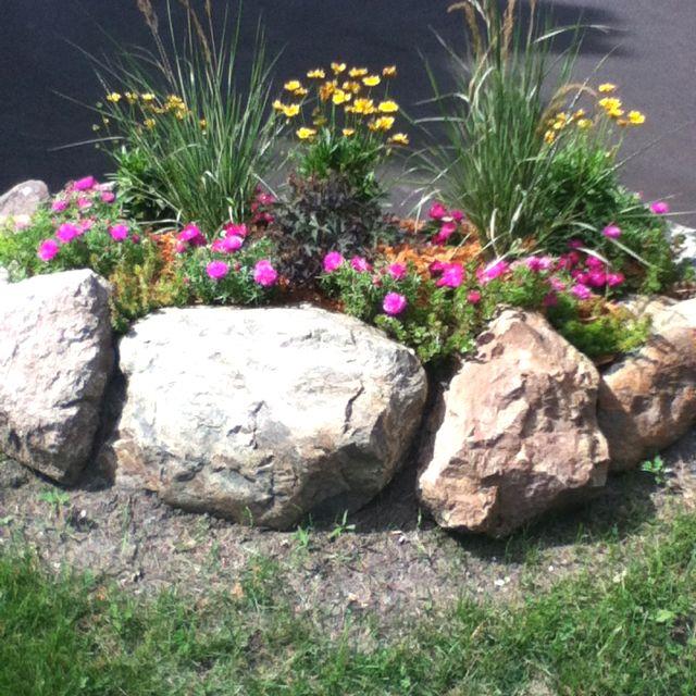 Rock border garden with perennials and annuals