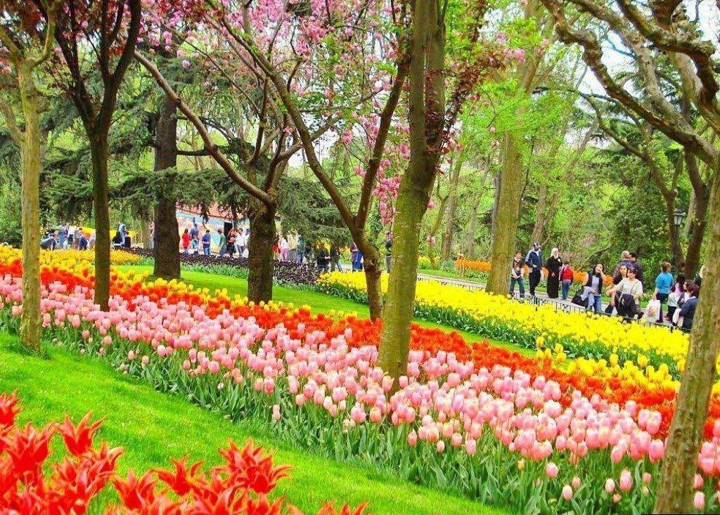 السفر إلى تركيا أجمل المناطق السياحية في تركيا Travel To Turkey World Travel Dolores Park