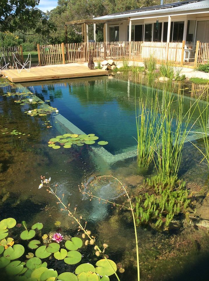 Constructed in north east victoria this is a shining for Gartenpool eingelassen