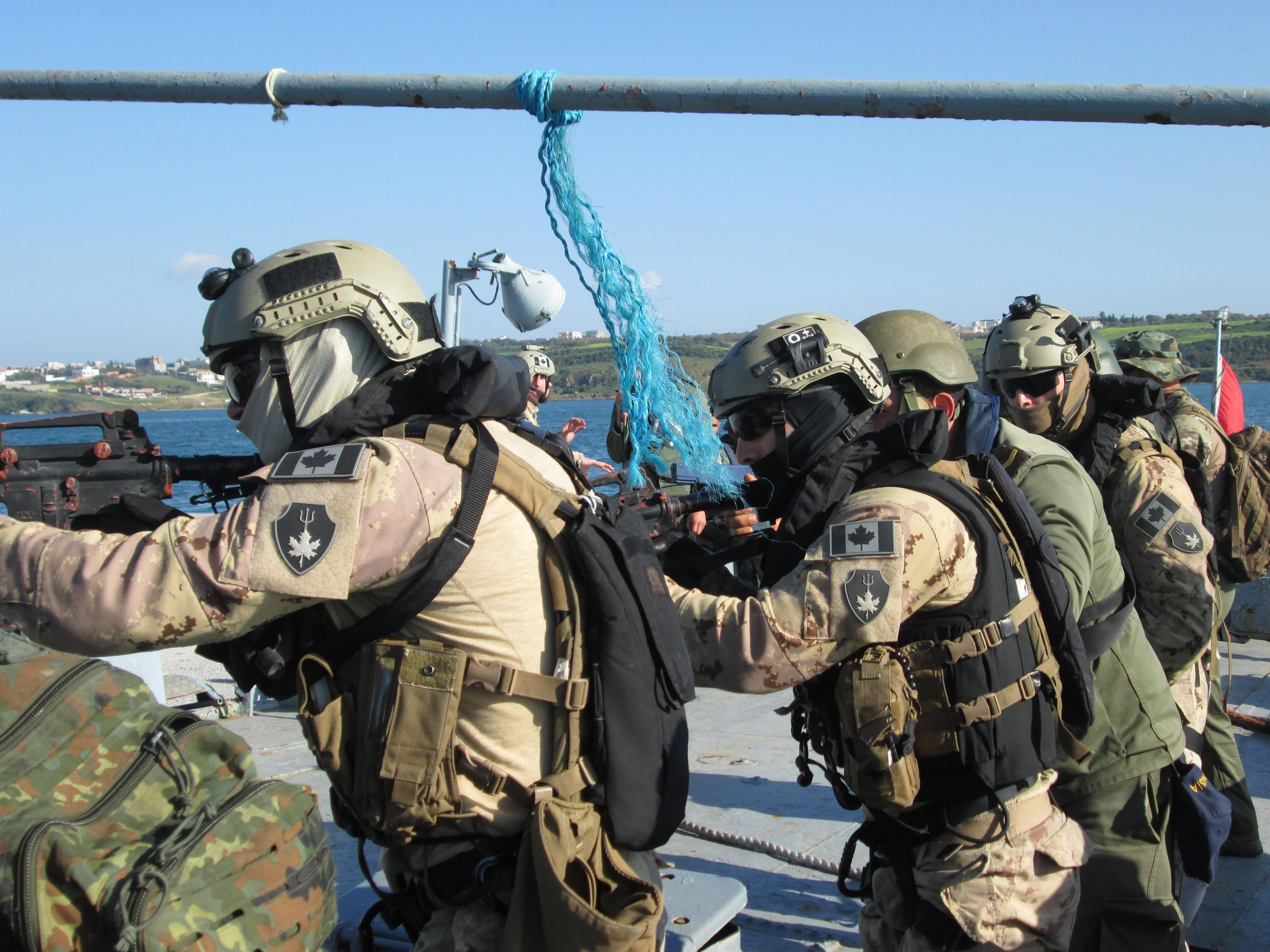 The Royal Canadian Navys Maritime Tactical Operations Group