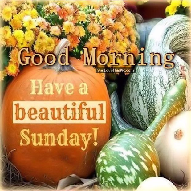 Good Morning Have A Beautiful Autumn Sunday Pictures Photos and | Have a  beautiful sunday, Sunday pictures, Happy sunday quotes