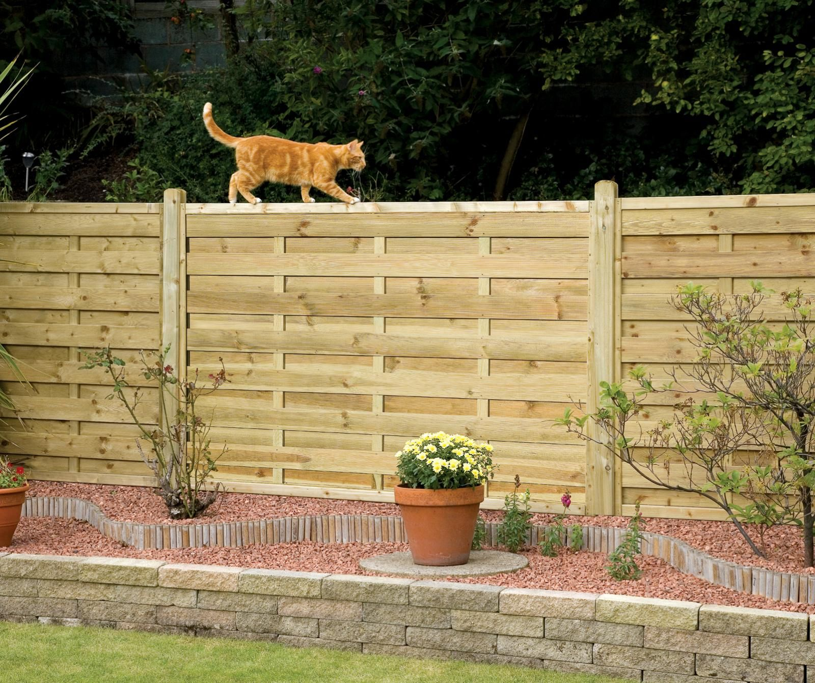 landscaping for cats garden fence panels into a very