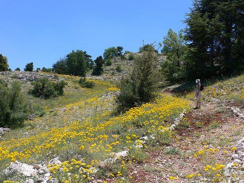 The Wall Street Journal Showcases Hiking in Lebanon's Mountain Trail
