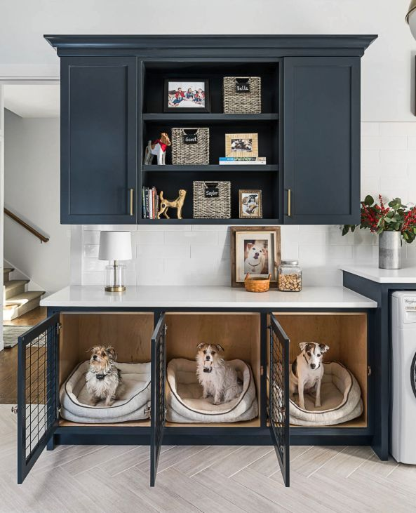 Photo of Nicht verhandelbare Dog Room Decor Essentials – Wohnaccessoires Blog