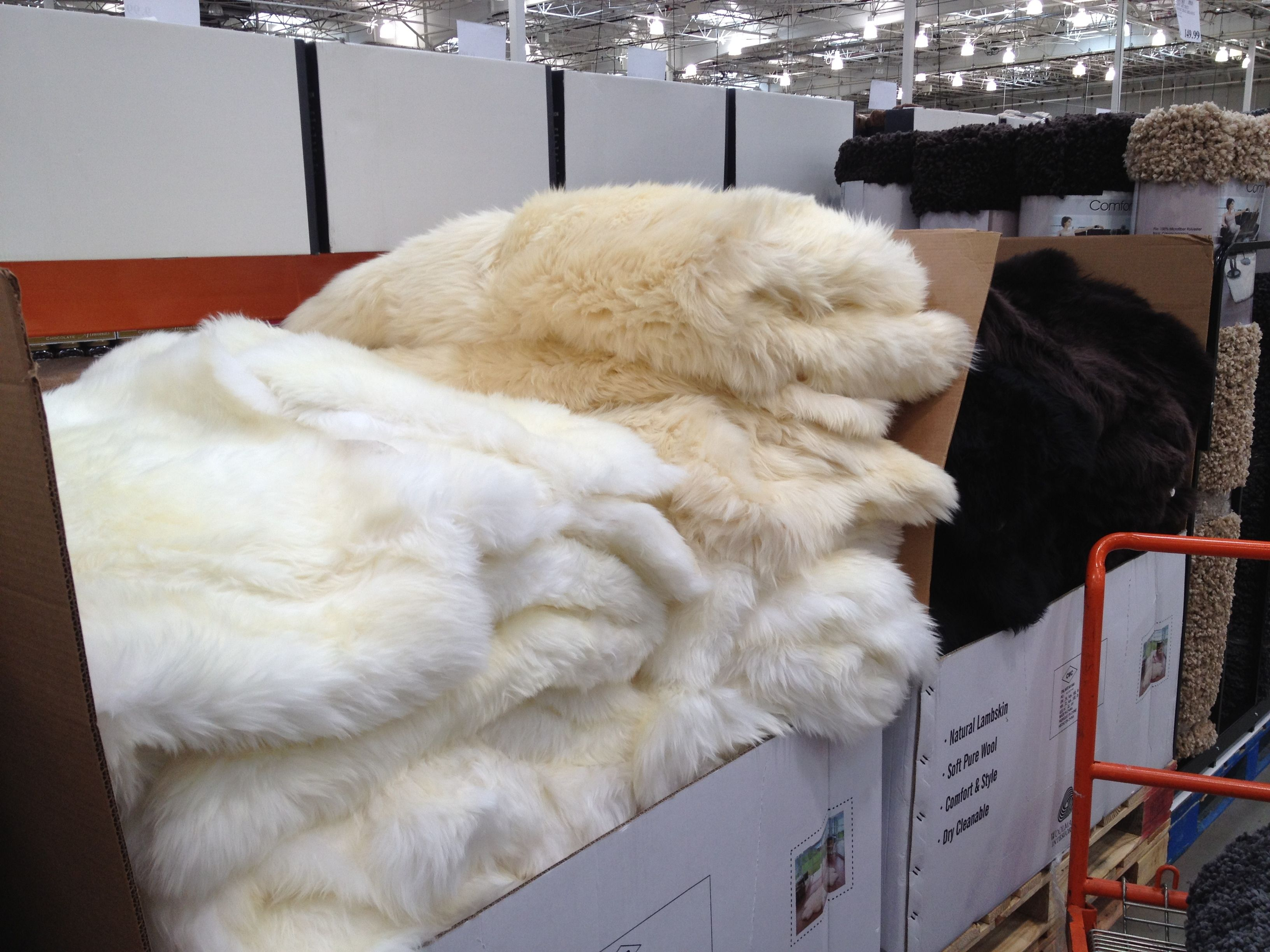 Costco Throw Blanket Amazing Pinpaul Rogers On Sheepskin  Pinterest  Fur Inspiration Design