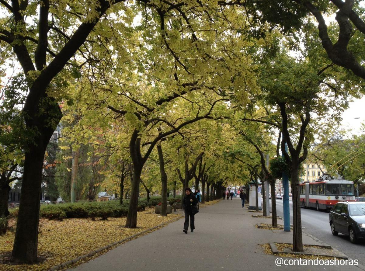 Bratislava: um bate-volta perfeito a partir de Viena