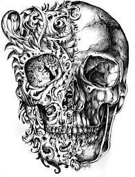 anatomy art tumblr - Buscar con Google