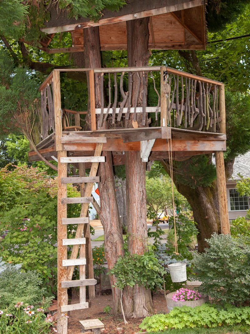25+ ] Treehouse Design Ideas That Are Nice Than Your House | Simple Treehouse Design Rockport on history designs, code.org designs, bad hair day designs, fort designs, new york designs, travel designs, living room designs, mother's day designs, houses designs, bathroom designs, space designs, punkin chunkin designs, heart broken designs, truth be told designs, deck designs, art designs, california designs, throwdown designs, clubhouse designs, garage designs,