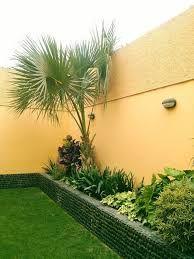 Resultado De Imagen Para Diseno De Jardines Pequenos Para Entradas De Casas Paisajismo De Patio Jardines Jardines Bonitos