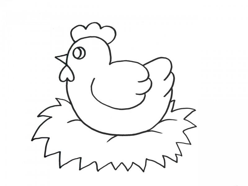 ᐈ Dibujos De Gallinas Video Pinta Un Pollito Caricatura ᶘᵒᴥᵒᶅ Gallinas Dibujos Como Dibujar Una Gallina Gallinas