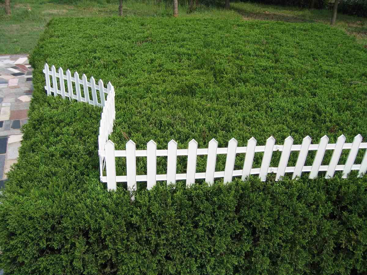 Fence Garden Ideas garden fence ideas 10 Garden Fence Ideas