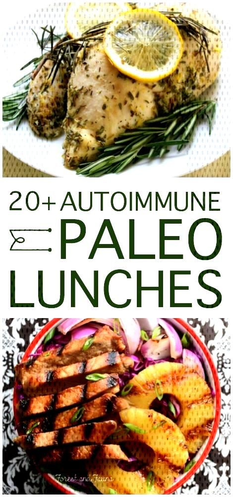 Over 20 Delicious AIP Lunches -