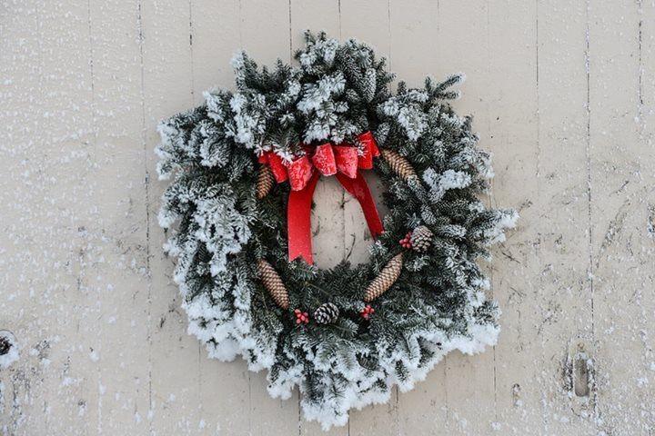 Pin by Sarah Potwin on Christmas | Christmas wreaths, Holiday decor, Christmas