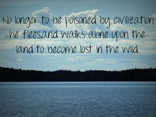 Into The Wild Quotes Awesome Into The Wild Christopher Johnson Mccandless The Core Of A Man's . Decorating Inspiration
