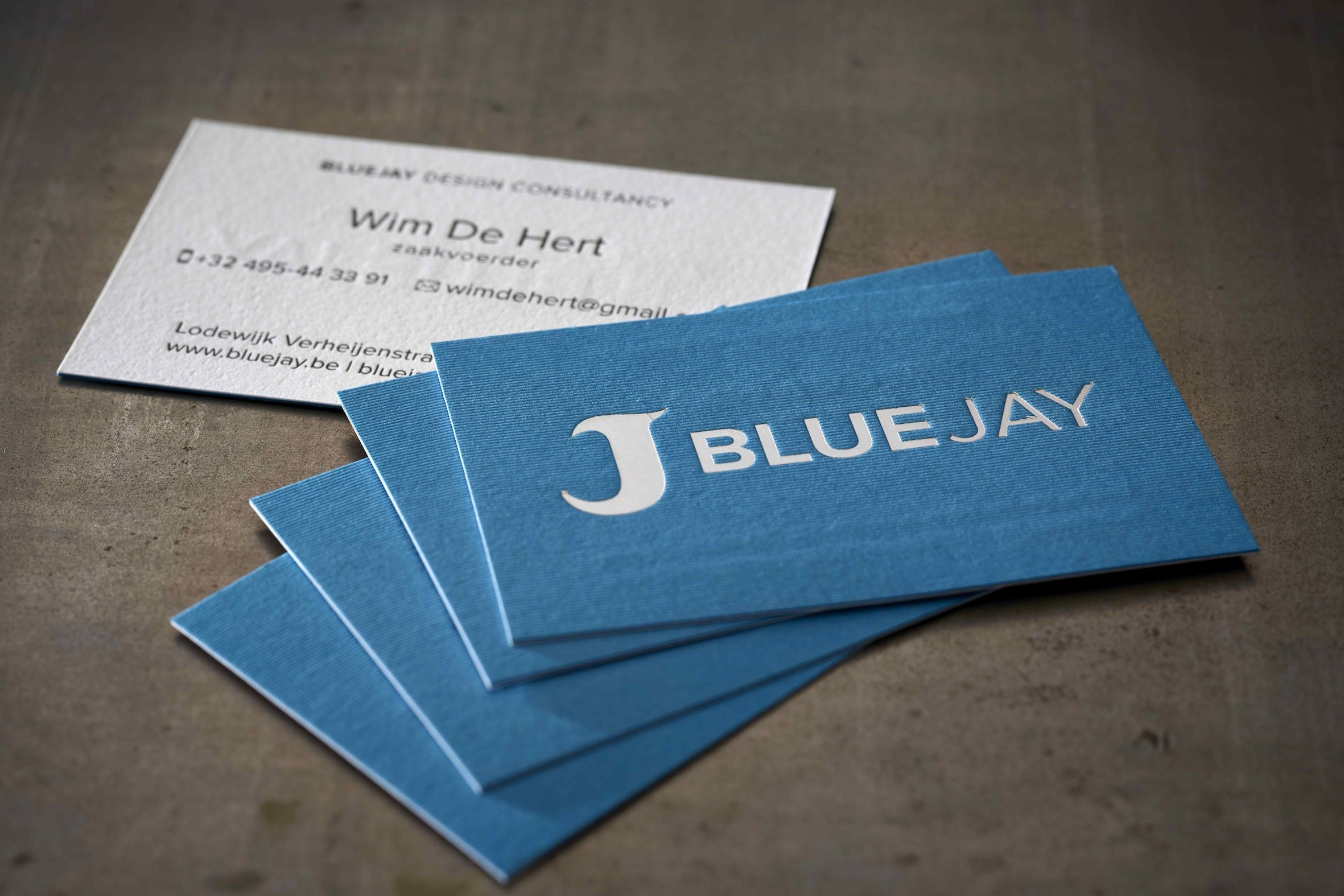 business cards bluejay design by bluejay hotfoil silver on