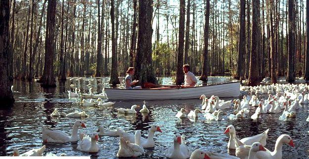 Image result for the notebook canoe scene