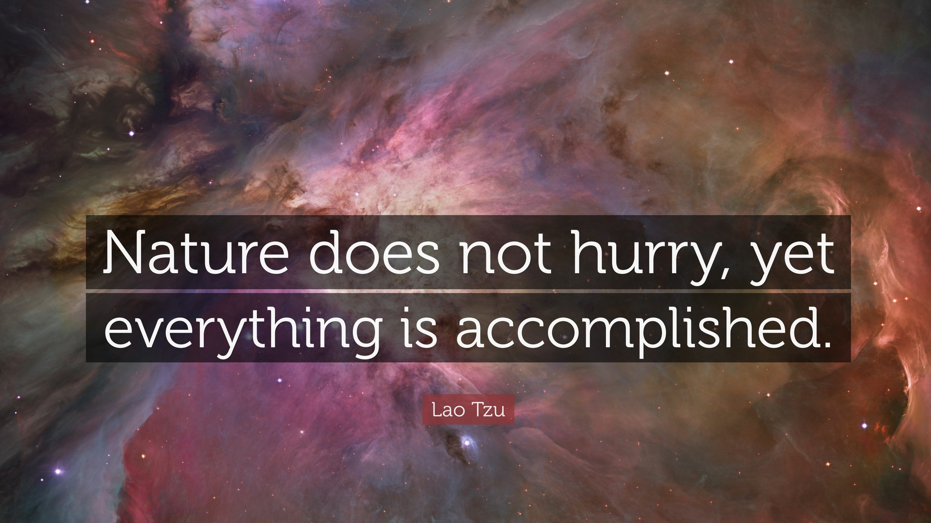 Nature does not hurry, yet everything is accomplished..