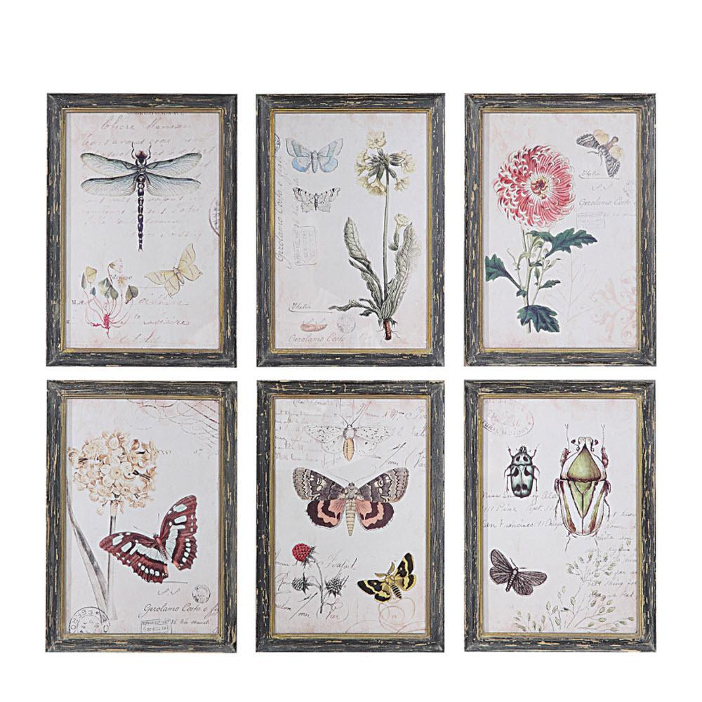 Home Decorators Collection 13 in. H x 9.5 in. W Herbarium Prints ...