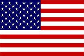 United States Of America Flag 3 X 5 Flag Flags Of The World The Unit