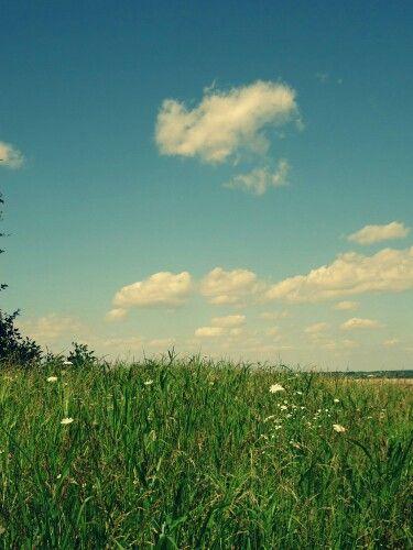 Summer - southern illinois