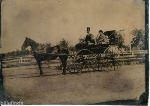 Late 1800s Vintage Antique Half Plate Top Hat Horse Carriage Tin Type Photo | eBay