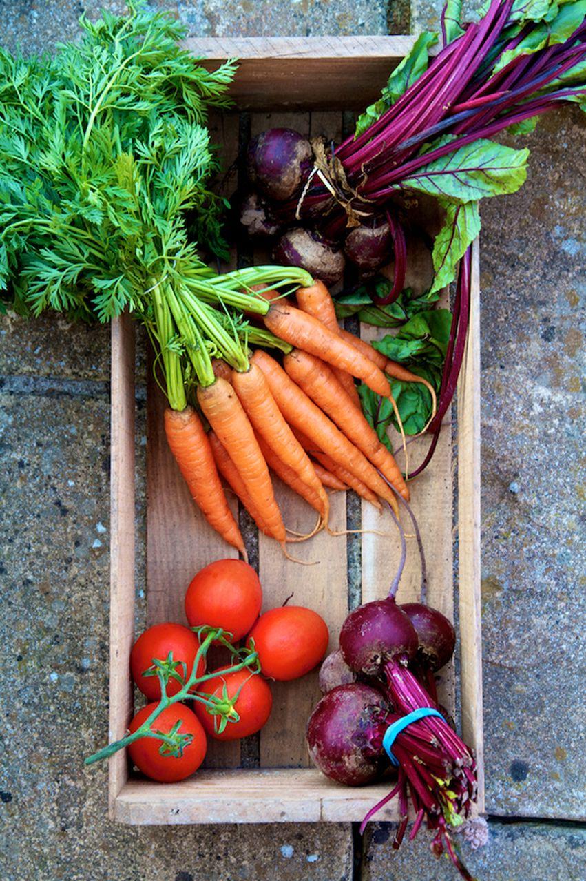Fresh winter veg vegetables fruit and veg fruits and