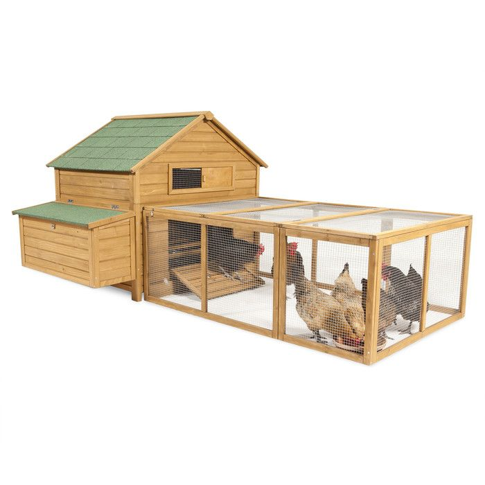 Pawhut Large Backyard Hen House En Coop With Long Run Reviews Wayfair