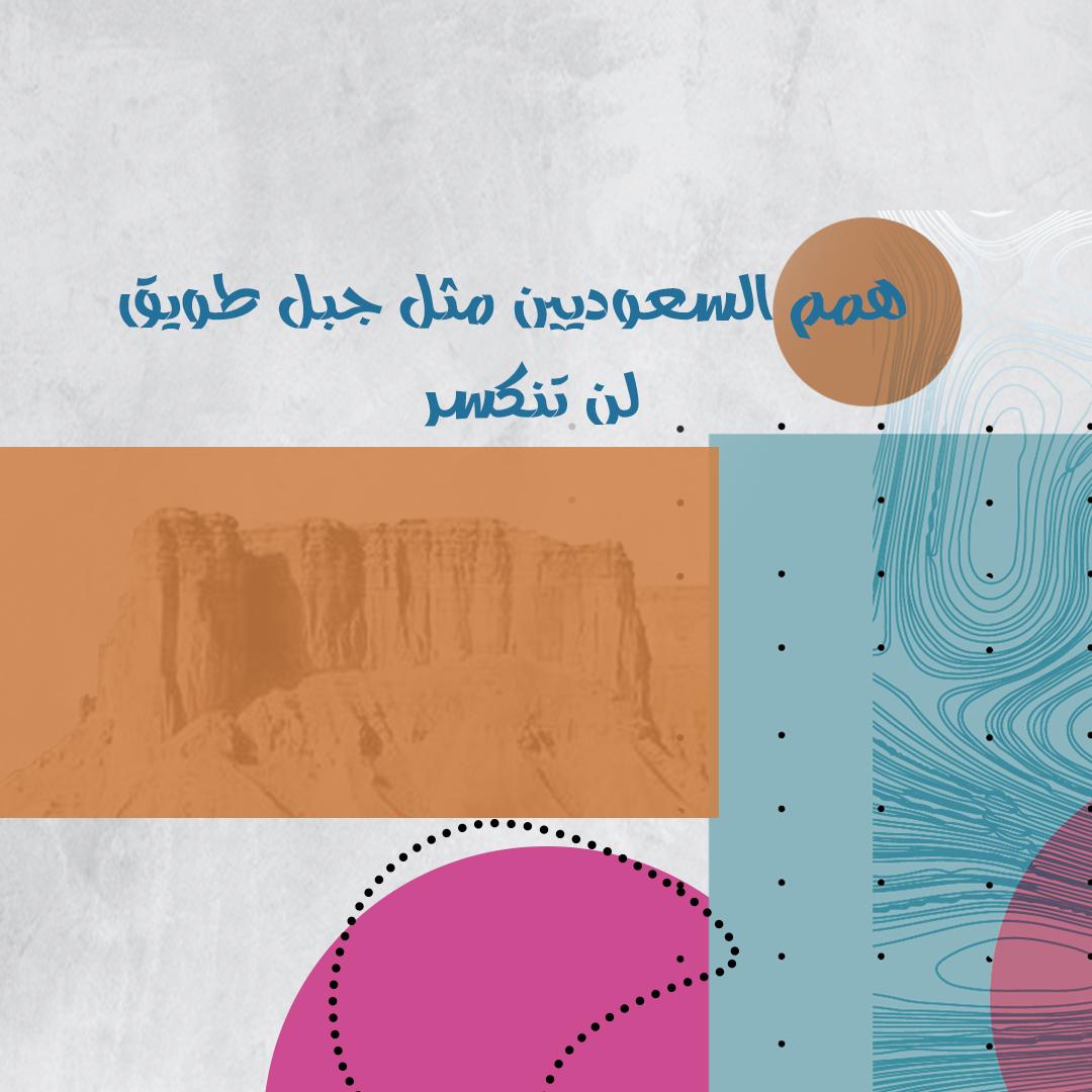 شركة الهمم للترفية المملكة العربية السعودية Ksa Saudi Arabia Pie Chart National Day