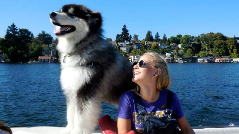 "W Day Photo Contest 2014: ""The best ""sailgating"" dawg!"" 